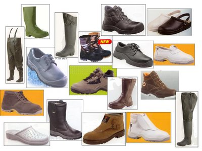 calzado por catalogo